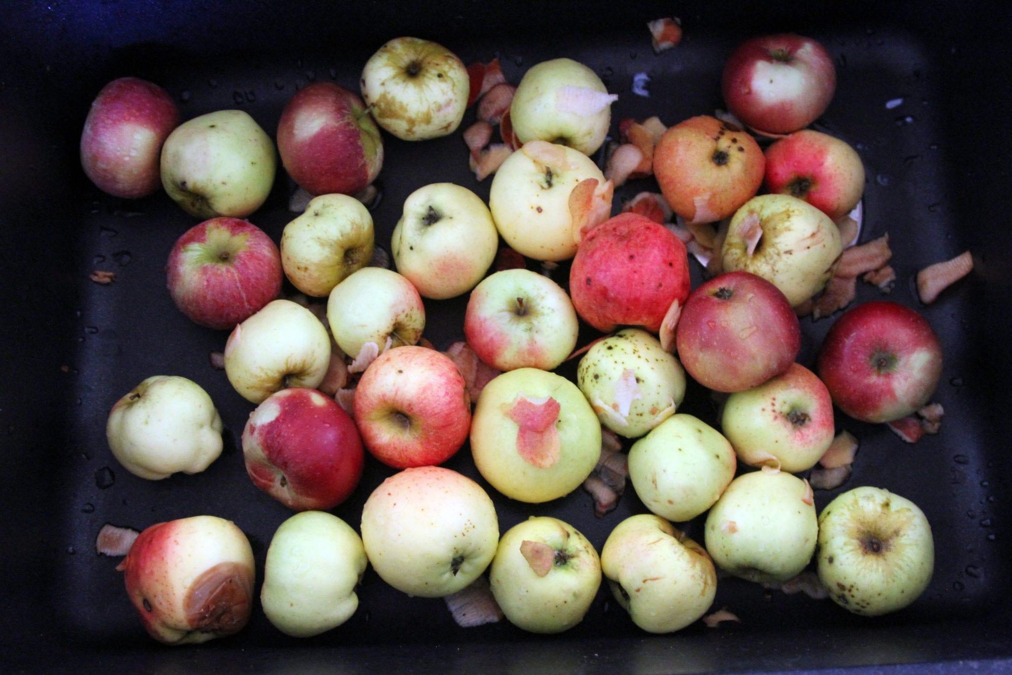 æbler til æblegrød