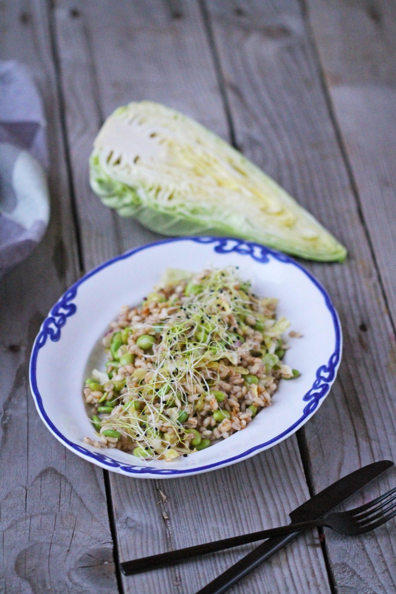Protein salat - perlebyg og edamame bønner