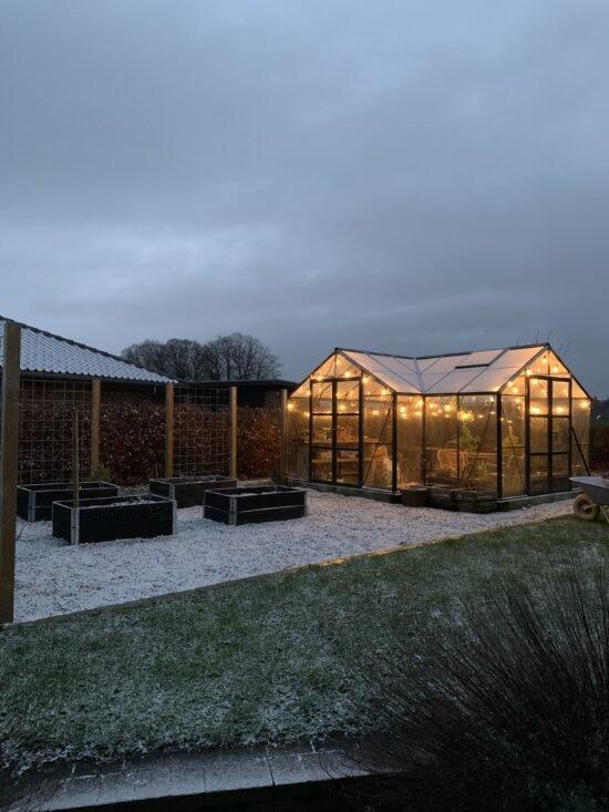 7 ting i januar - drivhus